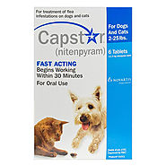 Buy Capstar Flea & Tick Treatment for Dog Supplies - PetCareClub.com