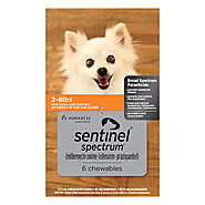 Sentinel Spectrum Chewables for Dogs : Buy Sentinel Spectrum Chew