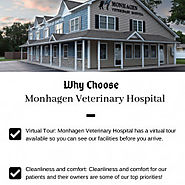Why Choose Monhagen Veterinary Hospital ? | Visual.ly