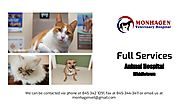 Full-Services Animal Hospital In Middletown