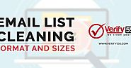 Email list cleaning format and sizes