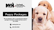 Great Puppy Packages by Newburgh Veterinary Hospital