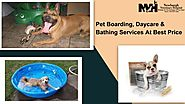 High Quality Pet Boarding, Daycare & Bathing Services