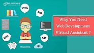 Web Development Virtual Assistant