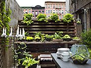 Design an Urban Garden | HGTV