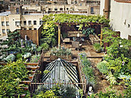 30 Rooftop Garden Design Ideas Adding Freshness to Your Urban Home - Freshome.com