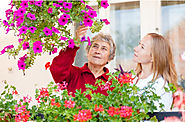 Fun Activities You Can Enjoy with a Senior Loved One
