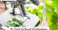 How Prospective Is A Career In Food Science And Technology?