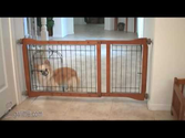 Pet Gate Step-Over with Dog Door
