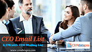 Gain More ROI from Multichannel Marketing Campaigns with CEO Mailing List