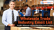How to Get More Profit by Using Wholesale Trade Industry Email Marketing List