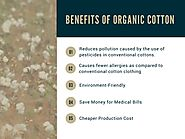 Benefits of Wearing Clothes Made from Organic Cotton