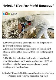 Helpful Tips for Mold Removal