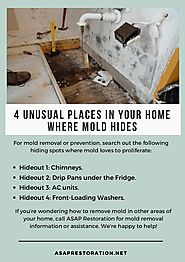 4 Unusual Places in Your Home Where Mold Hides