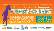 Dumb Friends League | Denver Area Humane Shelter, Animal Rescue and Care