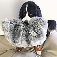 Snuggle Up With Super Soft and Fluffy...Accessories