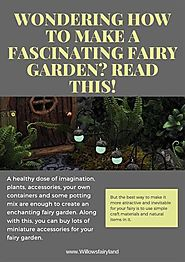 Wondering how to Make a Fascinating Fairy Garden- Read This!