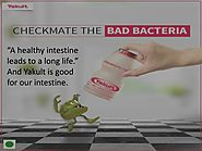 PPT - Yakult - Probiotic Drink for your Healthy Intestine PowerPoint Presentation - ID:7808405