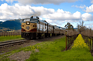 What is so Special about the Napa Valley Wine Tours Train