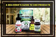 A Beginner's Guide To CBD Products- Which CBD Form Is The Best For You?