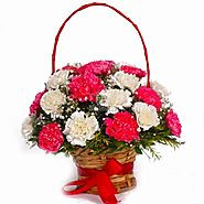 Basket of 18 Carnations in white and pink color with white and green fillers