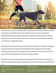 Custom Dog Collars - Personalization for Your Pet