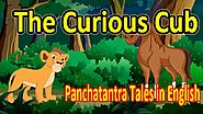 The Curious Cub | Panchatantra English Moral Stories For Kids | Best Of Aesop Fables