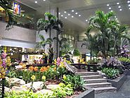 Singapore – Changi International Airport