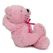 Order Cute Pink Teddy For Valentine Online Same Day Delivery - OyeGifts.com