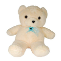 Teddy Bear Hidden DVR Camera