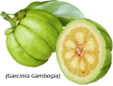 Is Garcinia Cambogia Walmart Right for You?