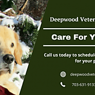 Pet vet Centreville VA - Deepwood Veterinary Clinic