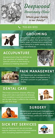 Best Pet Vet in Centreville VA