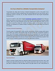 Al Safa: Transport Company in Dubai with Timely Delivery Assurance