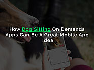 A new Startup Category: On-Demand Dog Sitting App For Busy Dog Owners
