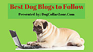 Best Dog Blogs to Follow 2017-18