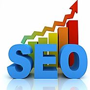 SEO Consultant in Delhi NCR | SEO Freelancer Delhi NCR | The Buzz Stand