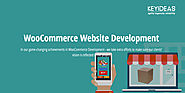 Best WooCommerce Website Development Company in USA & India