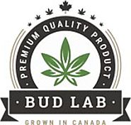Buy Cannabis Topicals Online | THC Rub, Bath Bombs & Cannabis Lotion | Bud Lab