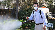 Why a Pest Control East Delhi service is essential for a premise – pest control east delhi