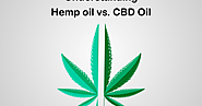 Hemp oil vs. CBD Oil: Need For Clarity