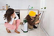 Hire professional Pest control from Gurgaon