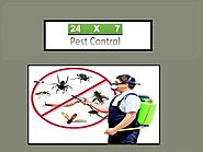 Pest Control Gurugram- An Expert in Pest Control Solutions by pestcontrolgurgaon993 - issuu