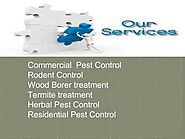 Free Inspection & Get 20% Discount For Pest Control gurgaon