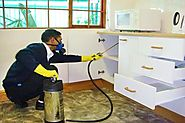 Pest control service in gurgaon by highly qualified professionals