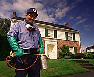 Professional Pest Control Services In Gurgaon