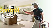Professional Pest Control Service Is Recommended To Avoid Severe Pest Infiltration