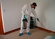 Effective Pest control Services In Gurgaon