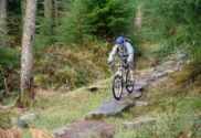 MBWales - Coed-y-Brenin Mountain Bike Centre - Advice & Guides at MBWales.com