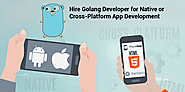 Hire Golang Developer for Native or Cross-Platform App Development